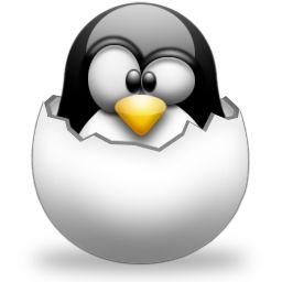 cumpleañpos pinguino bebe verano - Buscar con Google