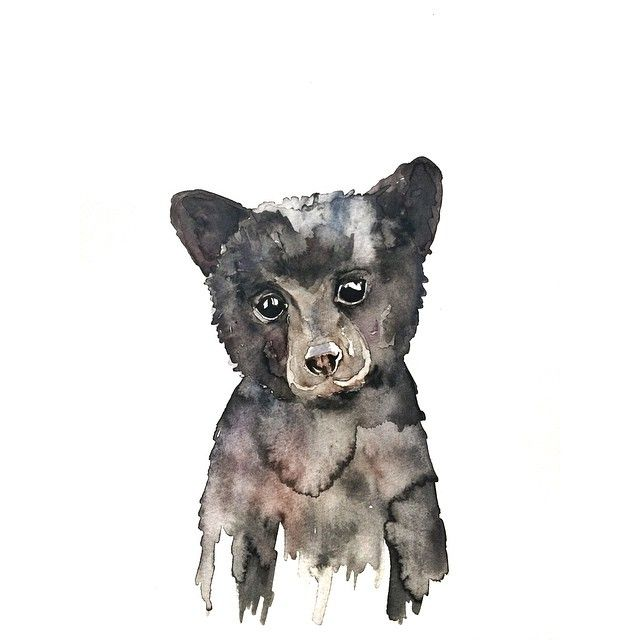 Black Bear Cub Watercolor - Laurel and Pearl                                                                                                                                                                                 More