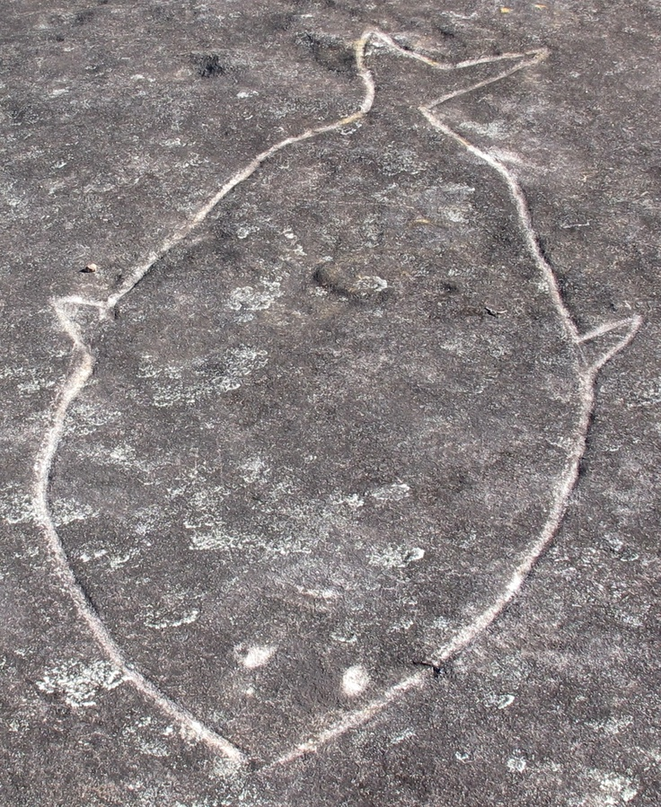 Aboriginal rock engravings site, Sydney. Fish (same one as seen elsewhere on this board, different angle).