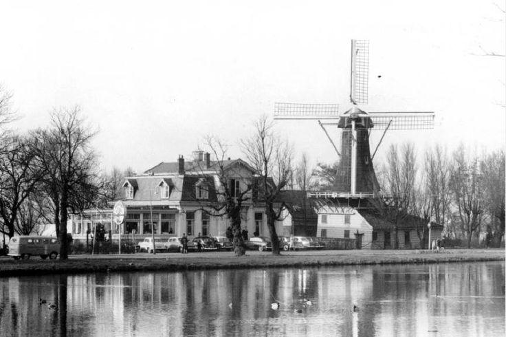 Aan de Plaszoom zien we molen 'De Lelie' en restaurant 'De Plasmolens' (nu bekend als De Tuin van de Vier Windstreken) in 1960. Op de voorgrond natuurlijk de Kralingse Plas.  De Lelie is een achtkante stellingmolen uit 1740 gelegen naast molen De Ster. In deze twee windmolens, die gebouwd werden als snuifmolens, worden nog altijd specerijen gemalen.