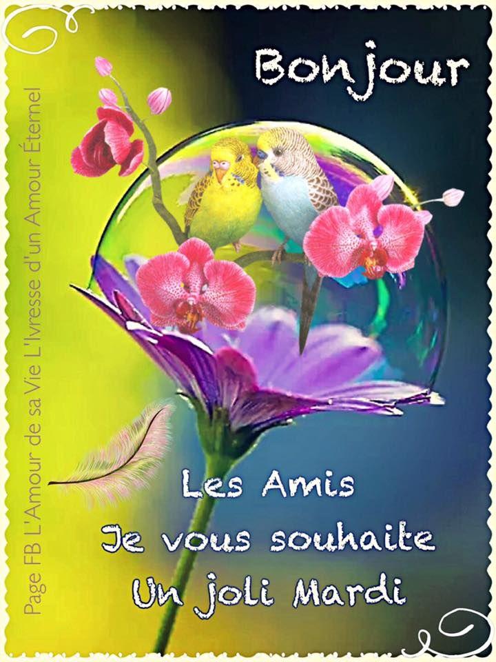 Mardi Image 7637 Bonjour Les Amis Je Vous Souhaite Un Joli