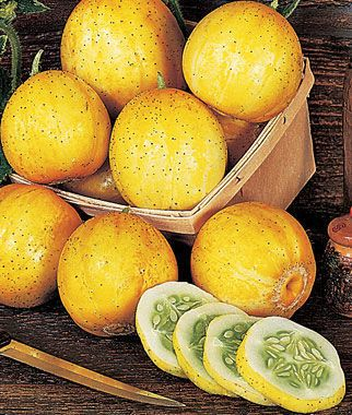 Cucumber, Lemon Organic.Lemon yellow cucumbers are tender and sweet, excellent for salads and pickling.