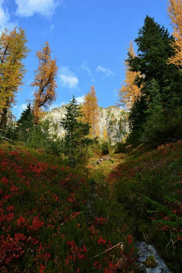 Fall in the North Cascades, Blue Lake trail