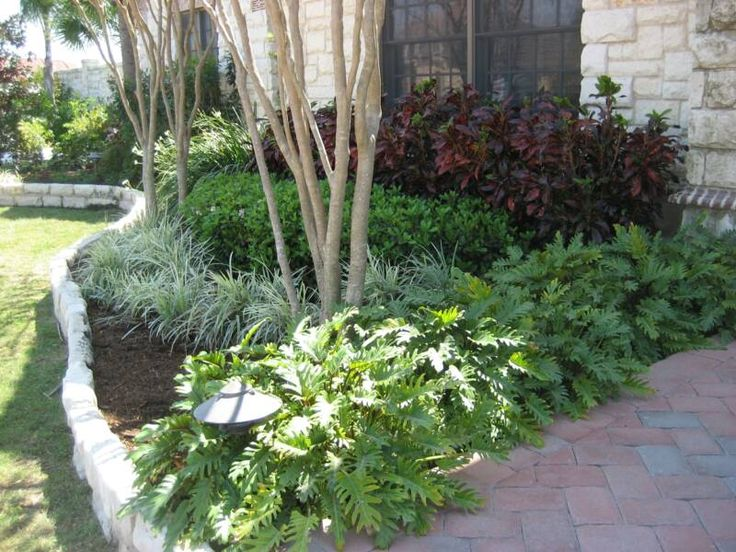 Residential Parkway Landscaping Ideas : Best ideas about southern landscaping on