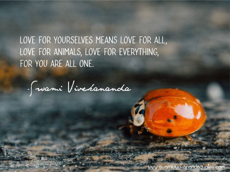 Quotes Vivekananda Alluring Best 25 Swami Vivekananda Quotes Ideas On Pinterest  Thoughts Of