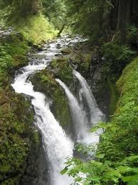 Queen Kerala(6N/7D), Heavenly Kerala(4N/5D)   Honeymoon Rainbow3N/4D), Golden Kerala(10N/11D), Floating Dream(3D/2N), Wayanad Secrets(4N/5D), Royal Kerala(9N/10D), Misty Munnar(2N/3D), Exiting KeralaHoneymoons Rainbow3N4D, Amazing Waterfall, Rain Forests, Landscapes, Awesome Nature, Forests Beautiful, Queens Kerala6N7D, Fall Water, Rainforests