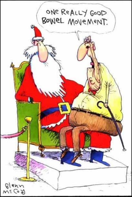 "The Christmas wishes that Santa would rather not hear ... ""one really good bowel movement!""☺"