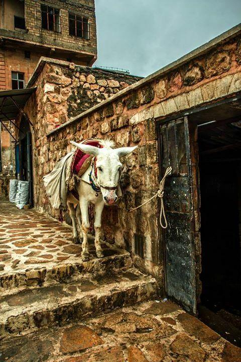 Mardin Turkey By Uğur Alpay