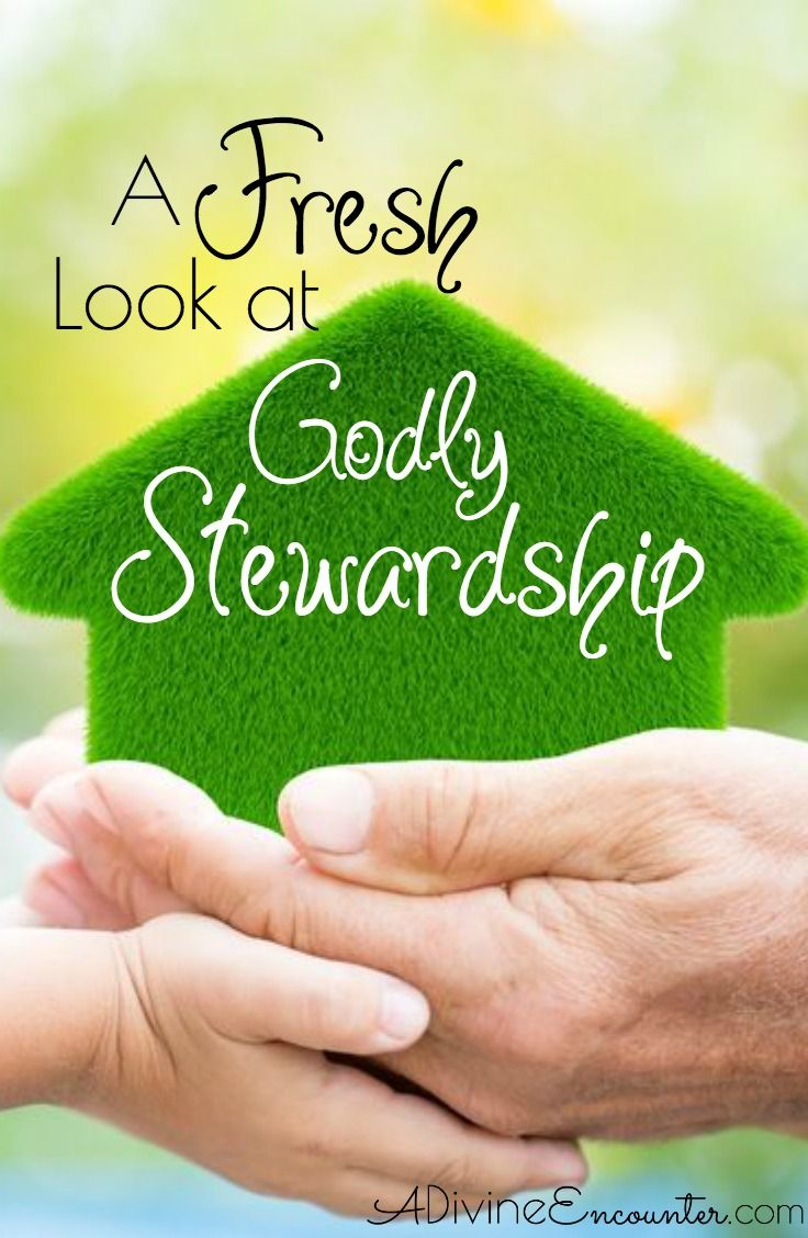 a look at christian stewardship essay The main sources for understanding stewardship in a religious context are  jewish and christian scriptures (pribbenow, 28) the bible contains many  references.