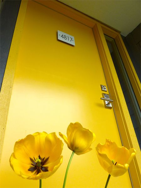 . it's the sheen that makes this door!  I think I need to repaint my yellow doors with high gloss paint