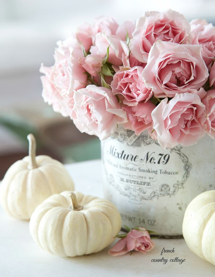 White baby pumpkins mixed with pink roses - love this fresh mix of flowers with traditional fall decor.