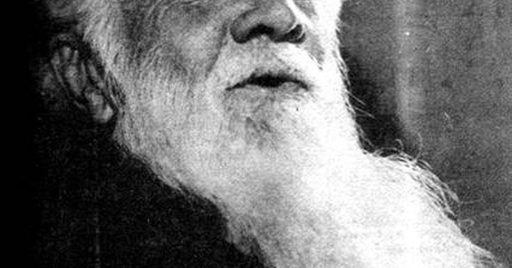 Cómo afeitar una barba larga. Aunque el acto de afeitarte una barba larga pueda parecer una gran molestia, la mayor parte de la dificultad es probablemente psicológica. Si te has dejado crecer la barba muy larga entonces con seguridad tomó años de tu vida y probablemente te has acostumbrado mucho a ésta. Estarás sorprendido, por supuesto, de qué tan diferente te sentirás justo ...