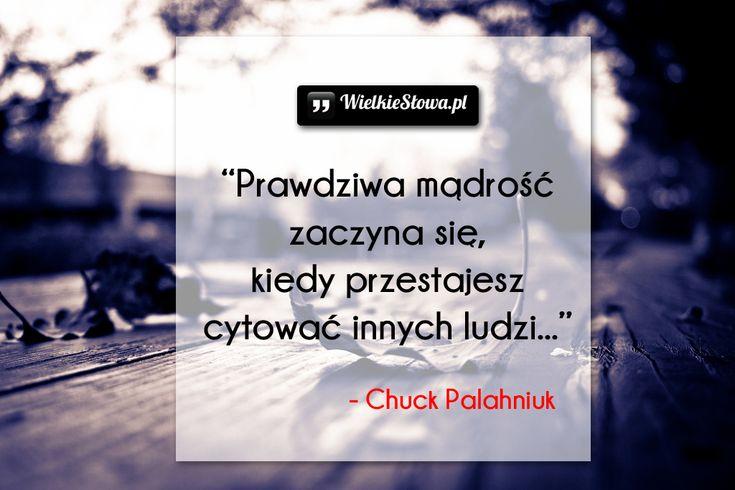 Prawdziwa mądrość zaczyna się... #Palahniuk-Chuck,  #Mądrość-i-wiedza, #Życie