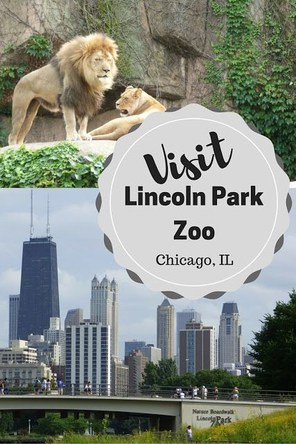 Travel: The Lincoln Park Zoo, Chicago