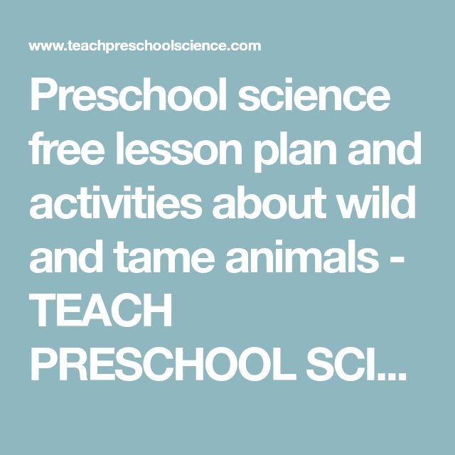 Preschool science free lesson plan and activities about wild and tame animals - TEACH PRESCHOOL SCIENCE