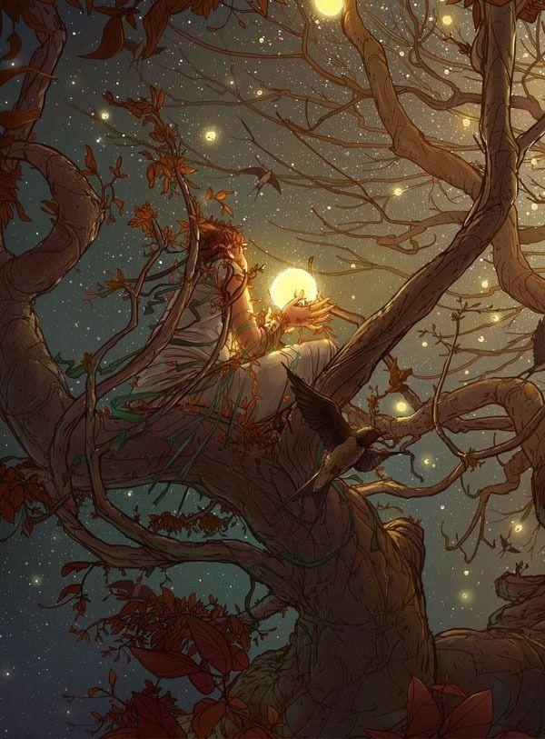 A árvore cresceu onde a poeira sempre caiu, tornando mais fácil para eu me sentar entre os seus ramos e recolher os pedaços do céu