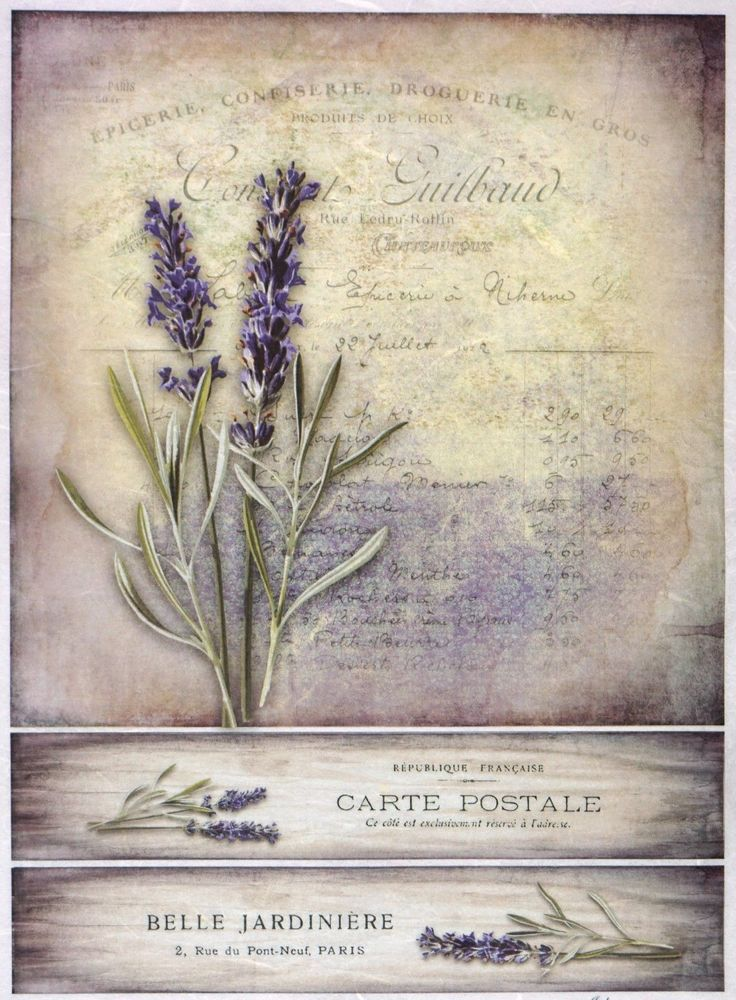 Ricepaper for Decoupage Decopatch Scrapbook Craft Sheet Vintage Lavender Card | eBay