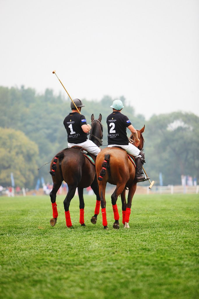 So much love and respect for polo ponies and their riders