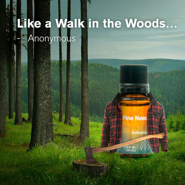 Pine Needle Essential Oil is the essence of a vast evergreen forest. Imagine the crisp, clean woods in a bottle, offering a recharging, revitalizing aroma anytime you need it!