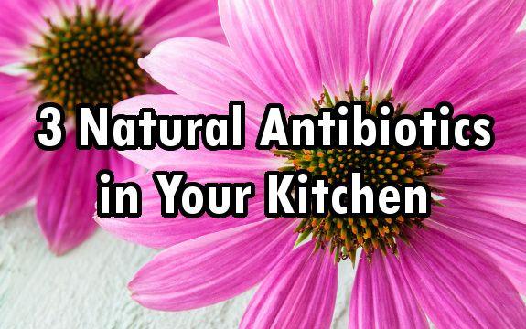 3 Natural Antibiotics Already in Your Kitchen