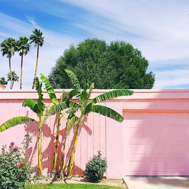 Palm Springs forever  (: @kellygolightly) #ABMtravelbug