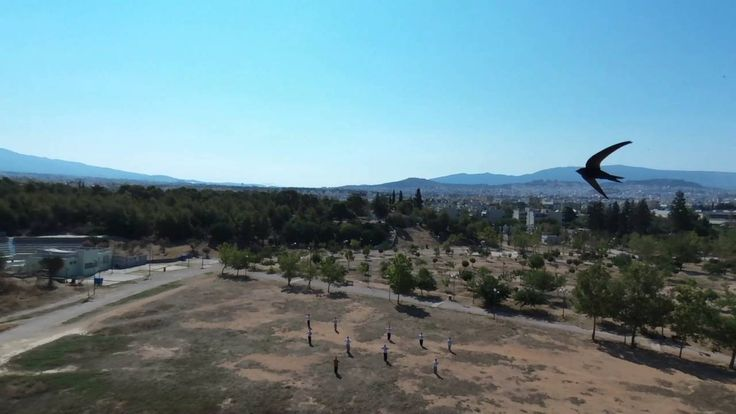 Shaolin Temple Athens | The Park (Το Πάρκο)