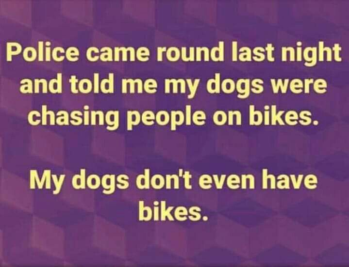 Pin By Sharon Aschinger On Just Plain Funny Funny Humor Haha Funny