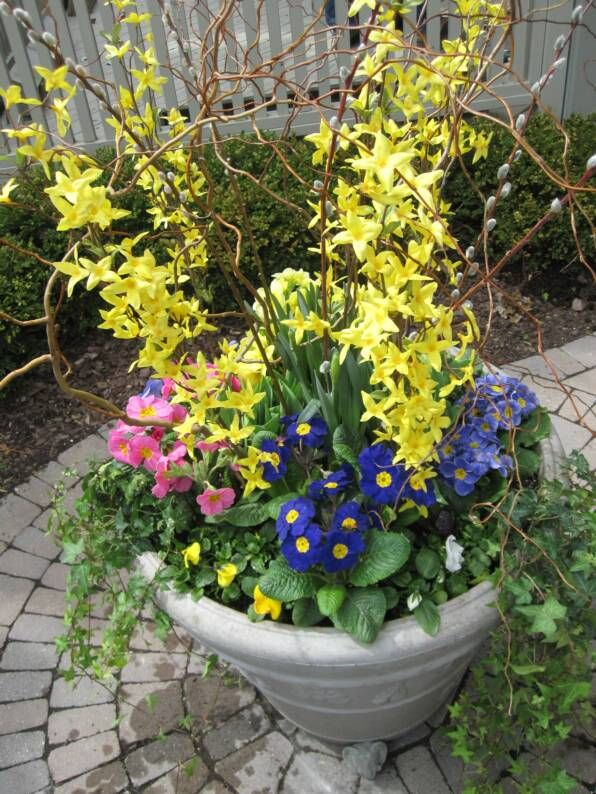 17 best images about spring containers on pinterest for Spring garden designs