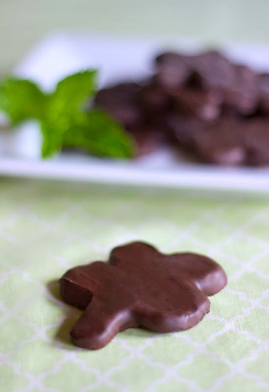 Thin Mints - Homemade Thin Mint Recipe - Natural Sweet Recipes