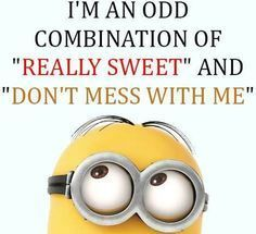 24 Newest Funny Minion Quotes and Pictures Of The Week… – 24, Funny, funny min…