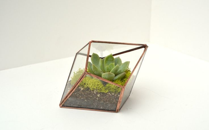 Succulent Glass Terrarium Stained glass by TheLandofSalt on Etsy