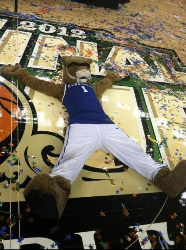 Celebra8: Big Blue, Bleeding Blue, Wildcats Fans, Wildcats Celebrity, Blue National, Championship Wildcats, Kentucky Basketball, Uk Wildcats, Kentucky Wildcats