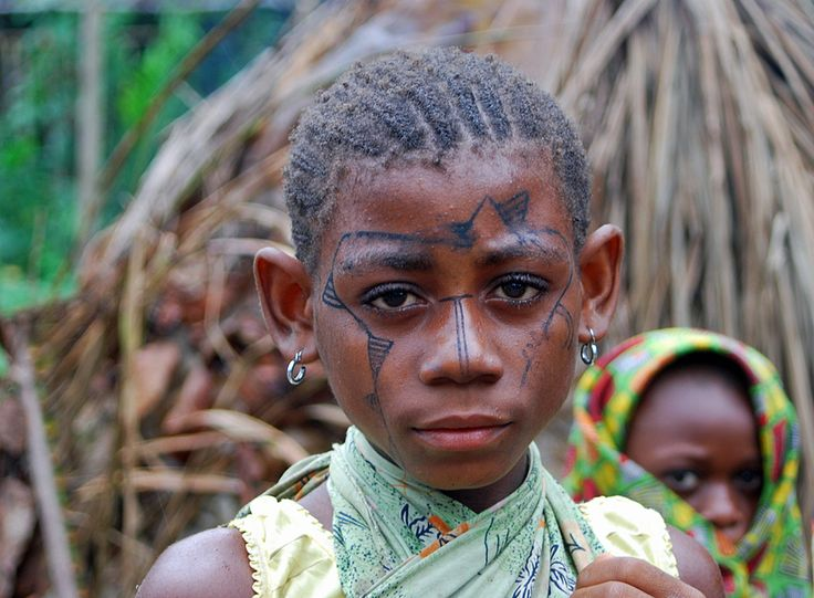 mbuti people of zaire essay Read this full essay on mbuti people of zaire the mbuti is an indigenous pygmy  group who lives in the ituri forest in zaire in doing research for this pap.
