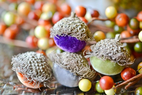 Set of 10 Silk Velvet Acorns in Various Colors by The Velvet Harvest