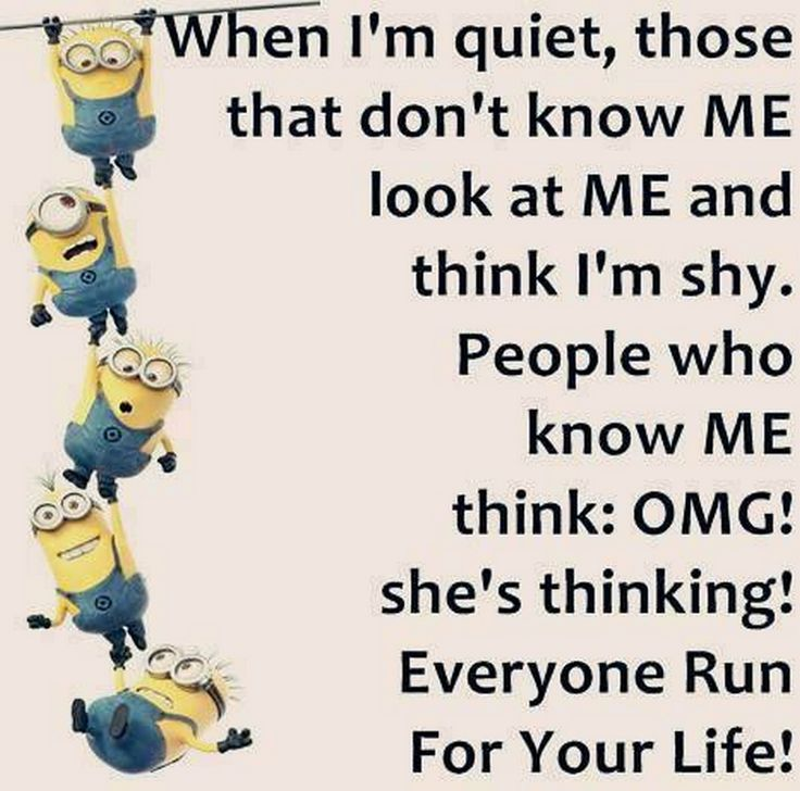 Funny Minion Quotes Gallery Of The Hour (08:26:00 AM, Thursday 25, February  2016 PST)   10 Pics