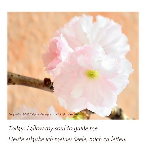 Soulful  -  Seelenvoll   --   Today, I allow my soul to guide me.   -   Heute erlaube ich meiner Seele, mich zu leiten.   --   by Steffi 2013-06-11