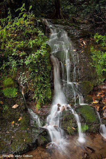Waterfalls in the Smokies • A list of beautiful falls in the Smoky Mountains to choose from.