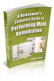 Removing mold on walls and inside walls. How to safely remove mold without spreading it to the rest of your home. Instructions and safety precautions for mold removal walls.