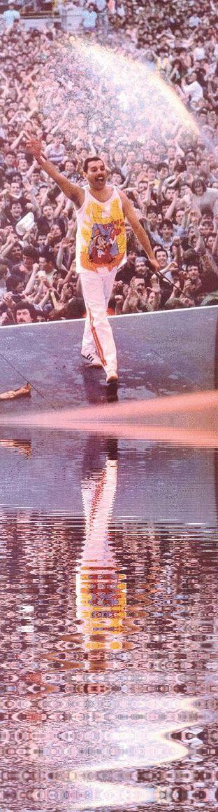 Freddie Mercury 1986