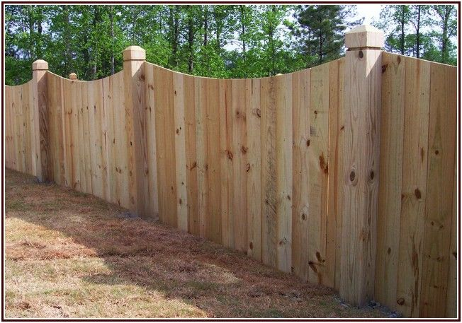 Unusually Inexpensive Privacy Fence Introvert Alert