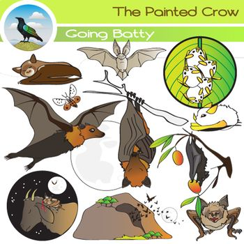 """This 24 piece """"Going Batty"""" clip art set features a variety of bats both small and large, from Flying Foxes, to vampire bats, to a colony of Honduran White Bats sheltering under a heliconia leaf. These graphics can be used to demonstrate different bat food sources (fruit, insects, blood)."""