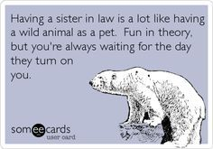 FUNNY ECARDS FOR BROTHER IN LAW - Google Search