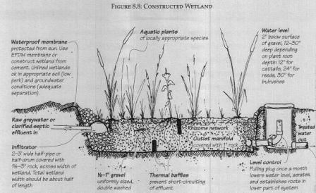 Constructed Wetland for grey-water management http://www.letsgogreen.com/images/greywater-constructed-wetland.jpg