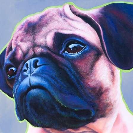 Blue Bulldog 82486