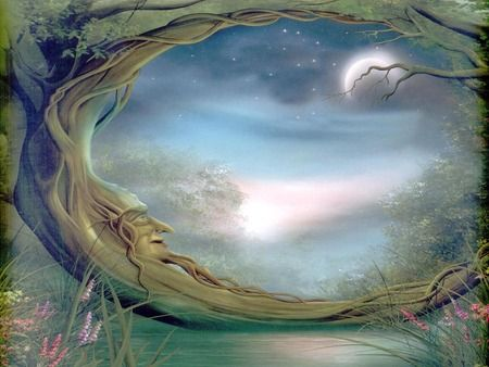 Mystical fantasy pictures mystical forest forest - Mystical background pictures ...