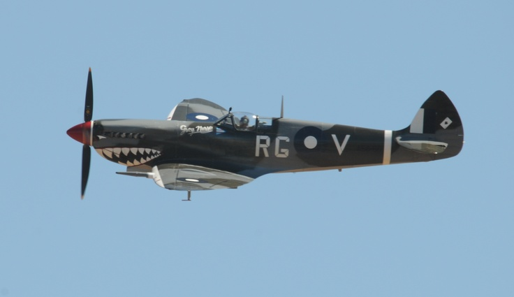Temora Aviation Museum's Supermarine Spitfire VIII, named the Grey Nurse. It is in the markings of Wing Commander Bobby Gibbes. Photograph Wendy Wilson.
