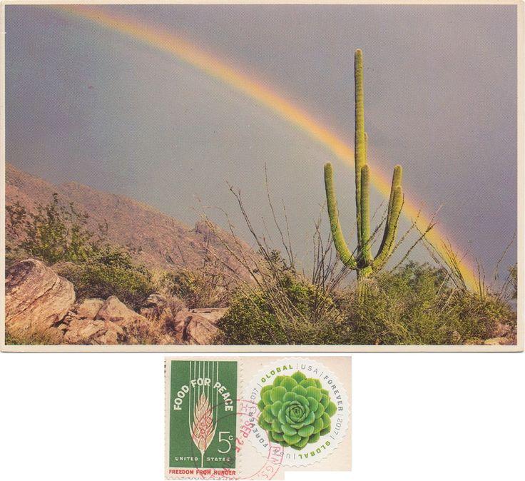 US-4899368 - Arrived: 2017.10.09   ---   Saguaro and Rainbow.