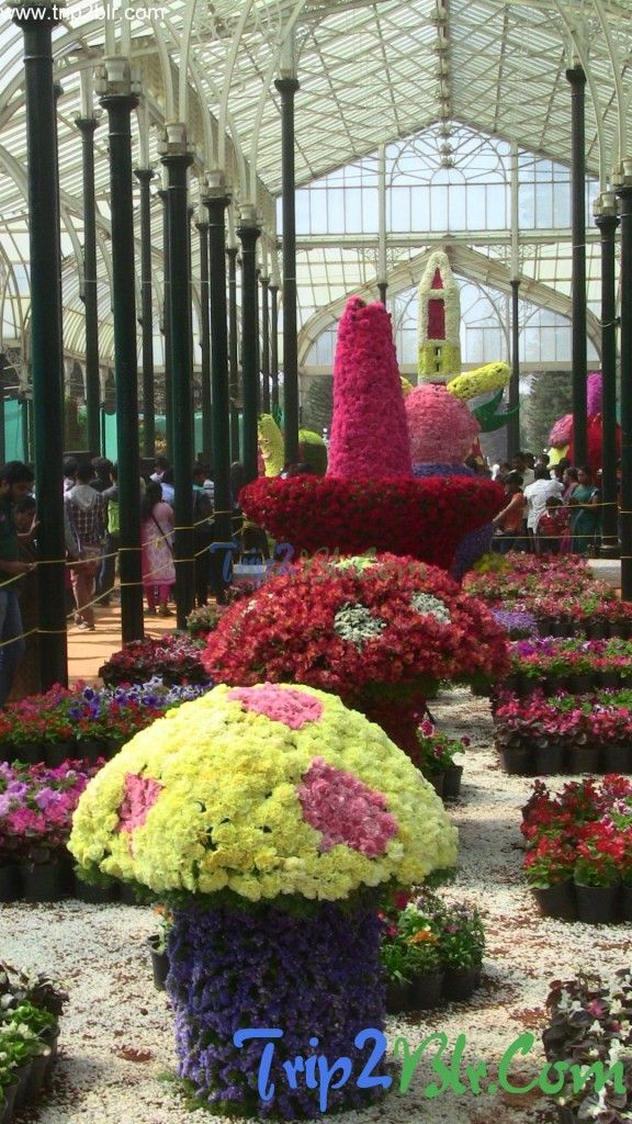 Flower Structures at Lalbagh Republic Day flower show 2014