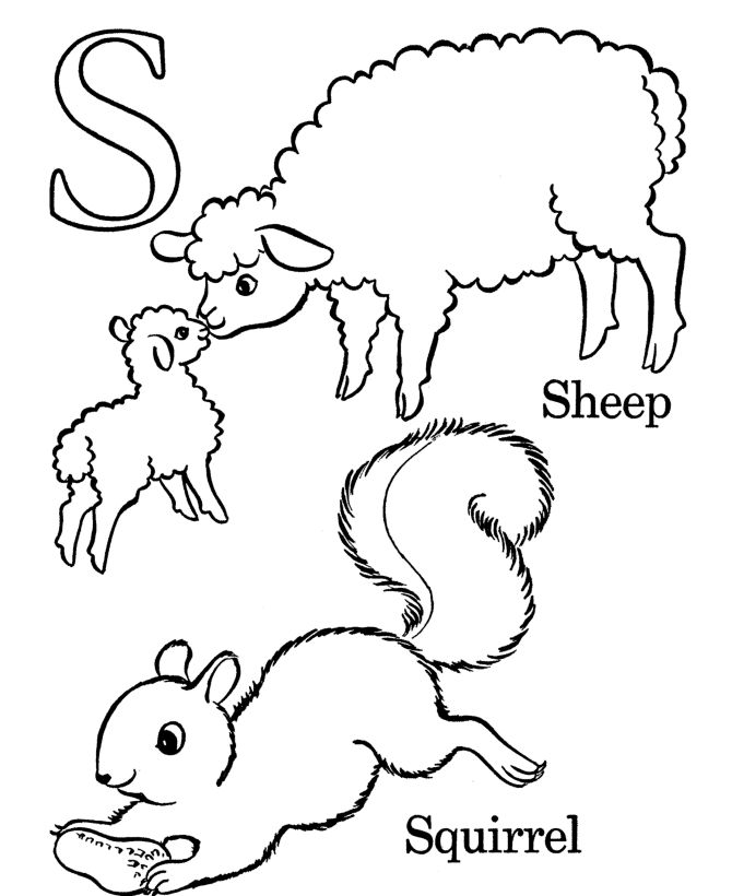 100 best images about ABCs on Pinterest  Coloring pages The