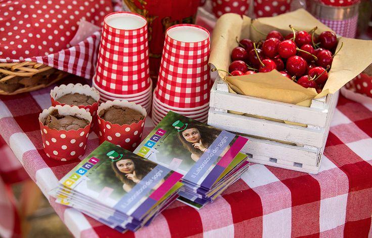La festa picnic è molto colorata e allegra, così come i nostri dépliant